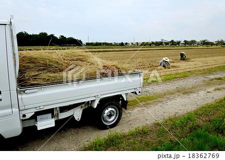 農作業 稲刈り後 干したわら束を積んだ軽トラック 18362769