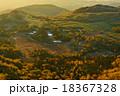 渋峠 18367328