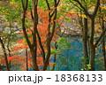 厳美渓 紅葉 風景の写真 18368133