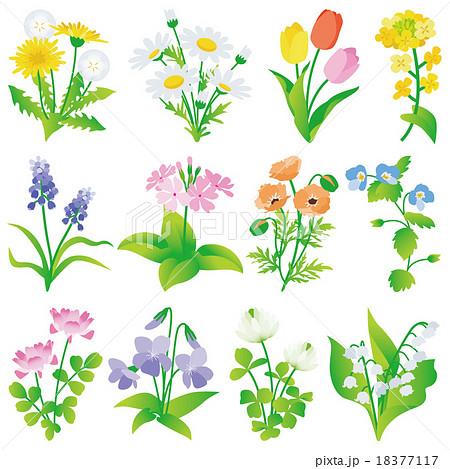 春の花 いろいろのイラスト素材 18377117 Pixta