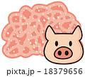 豚ミンチ肉 18379656