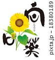 花 18380189