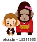 あいさつする猿とゴリラのカップル 18388963