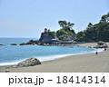 桂浜 18414314