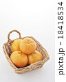 みかん 果物 フルーツの写真 18418534