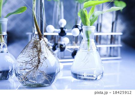 Biotechnology, Chemical laboratory glassware, bio の写真素材 [18425912] - PIXTA