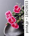 撫子 18428653
