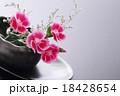 撫子 18428654