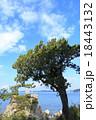 風景 森戸神社 海岸の写真 18443132