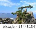 森戸神社 秋 晴れの写真 18443134