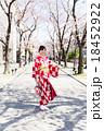 着物 女性 桜の写真 18452922