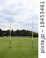 天然芝のラグビー練習場 18453461