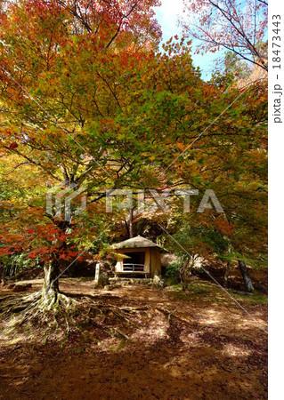 西行庵の秋(奈良県吉野郡吉野町) 18473443