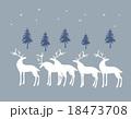 モミの木と白いトナカイ 18473708