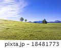 ババリア地方の田園風景 18481773