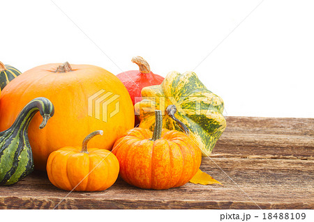 pumpkin on table 18488109