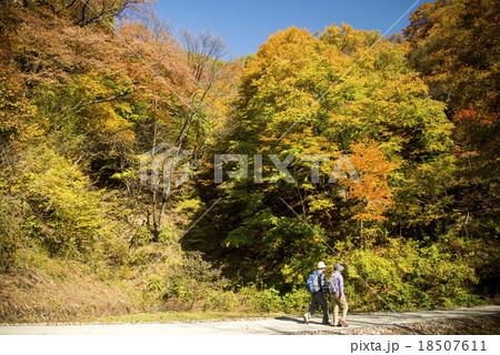 秋のハイキング 18507611