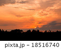 Fiery sunset and silhouette forest 18516740