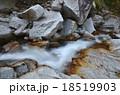 尾白川渓谷 渓谷 風景の写真 18519903