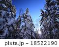 樹氷の森に昇る太陽 18522190