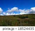 青空と白い雲の高原(高ボッチ高原) 18524435
