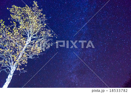 【日光・戦場ヶ原】秋の満天の星空 18533782