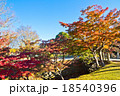 奈良公園 18540396
