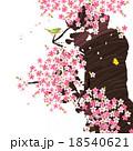 桜と鶯 18540621