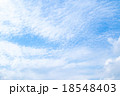 巻積雲 うろこ雲 いわし雲の写真 18548403