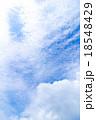 巻積雲 うろこ雲 いわし雲の写真 18548429