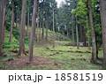 七尾城石垣 18581519
