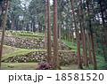 七尾城石垣 18581520