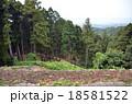 七尾城古道 18581522