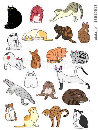Playful Dog Names