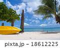 南国リゾート 18612225