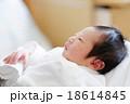 生まれたばかりの赤ちゃん 18614845