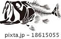 骨 18615055