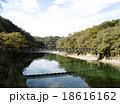 宇治川の穏やかな流れと天ケ瀬吊橋 18616162