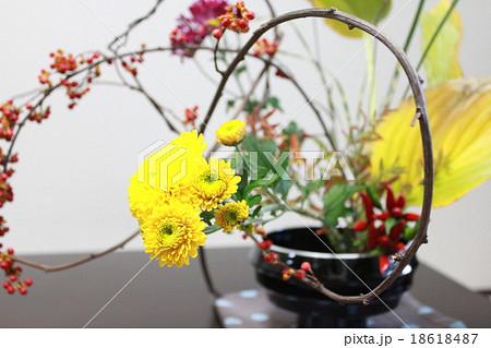 菊とウメモドキの生け花 18618487