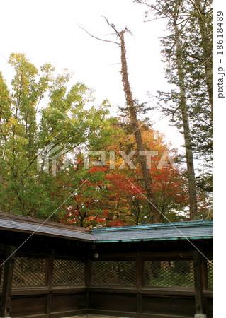 秋の上杉神社より望む 18618489