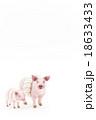 豚に真珠 18633433