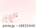 豚に真珠 ことわざ 豚の写真 18633440