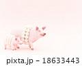 豚に真珠 ことわざ 豚の写真 18633443
