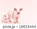 豚に真珠 ことわざ 豚の写真 18633444