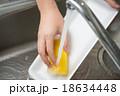 トレーを洗う 18634448
