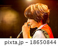 Akihabara 18650844