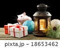 Cute white rat among Christmas decorations 18653462