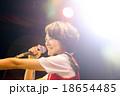 Akihabara 18654485