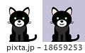 黒猫のキャラクター 18659253