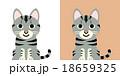 動物 キャラクター 猫のイラスト 18659325